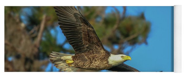 Yoga Mat featuring the photograph Soaring Eagle by Tom Claud