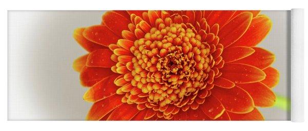 Soft Large Orange Gerber Daisy Yoga Mat