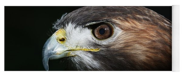 Yoga Mat featuring the photograph Sparkle In The Eye - Red-tailed Hawk by Debi Dalio