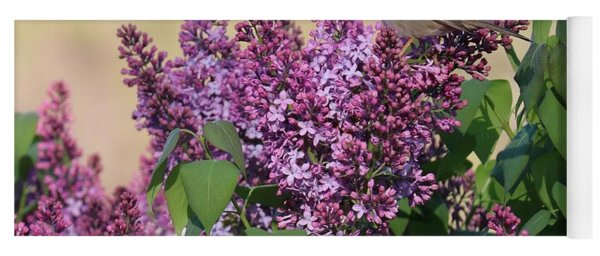 Sparrow In The Lilacs Yoga Mat
