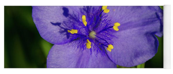 Spiderwort Flower Yoga Mat