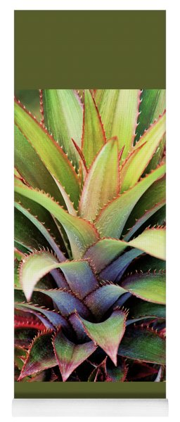 Yoga Mat featuring the photograph Spiny Succulent I by Leda Robertson