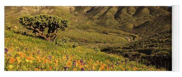 Springtime In The Desert Southwest Yoga Mat