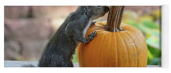 Yoga Mat featuring the photograph Squirrel And Pumpkin by Trina Ansel