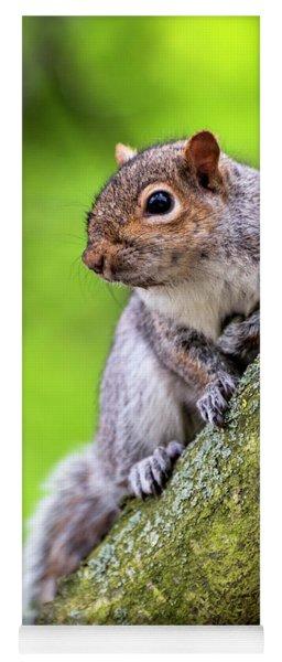 Squirrel At Greenwich Park Yoga Mat