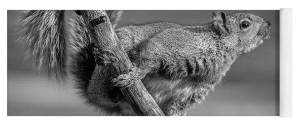 Squirrel In Black And White Yoga Mat