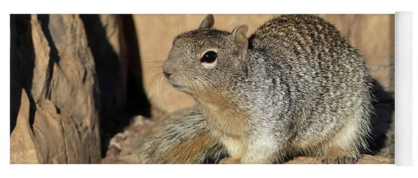 Squirrel Yoga Mat