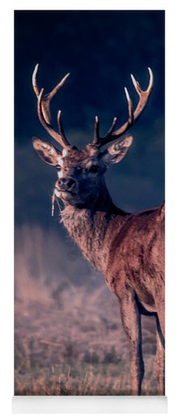 Stag Eating Yoga Mat
