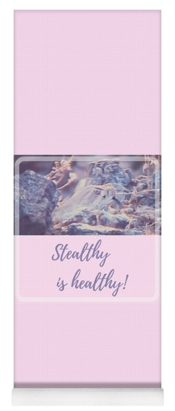 Yoga Mat featuring the photograph Stealthy Is Healthy by Judy Kennedy
