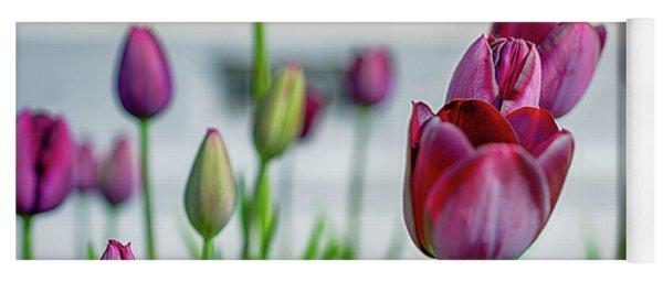 Steckborn Tulips Yoga Mat