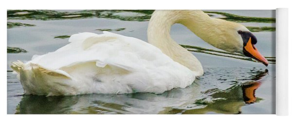Strasbourg Swan Yoga Mat