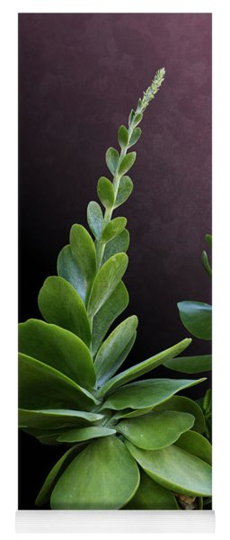 Succulent Spear Yoga Mat