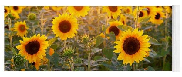 Sunflowers Field Yoga Mat