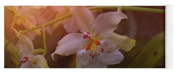 Yoga Mat featuring the photograph Sunrise Orchid by Richard Goldman