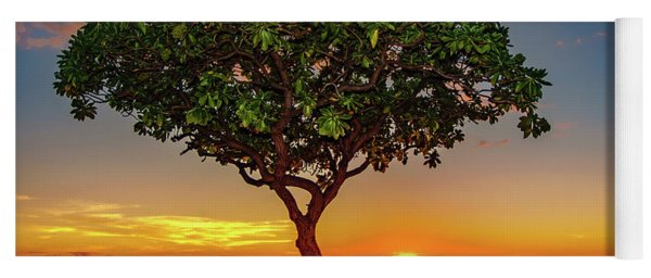Sunset Tree Yoga Mat