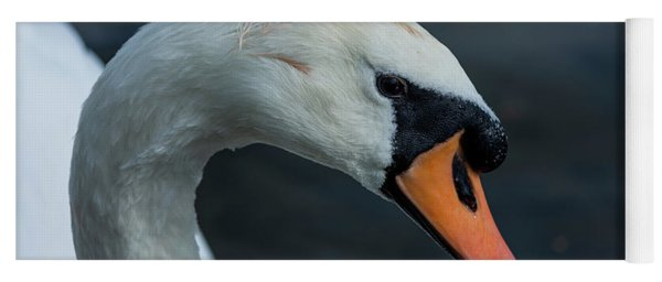 Yoga Mat featuring the photograph Swan Head Close Up On Blue Background by Scott Lyons
