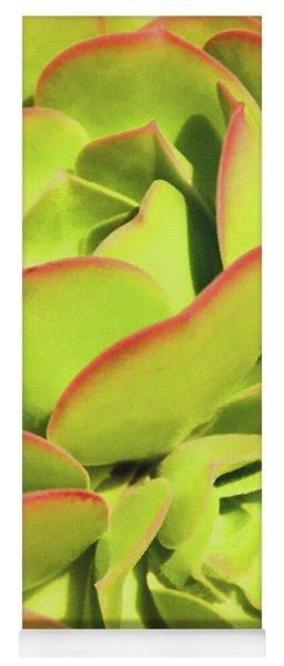 Sweet Succulents I Yoga Mat