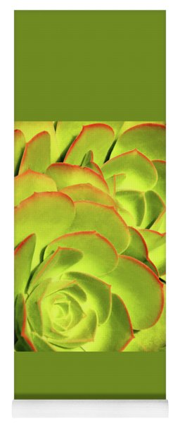 Yoga Mat featuring the photograph Sweet Succulents II by Leda Robertson