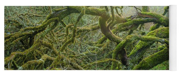 Yoga Mat featuring the photograph Tangled Moss by Mark Duehmig