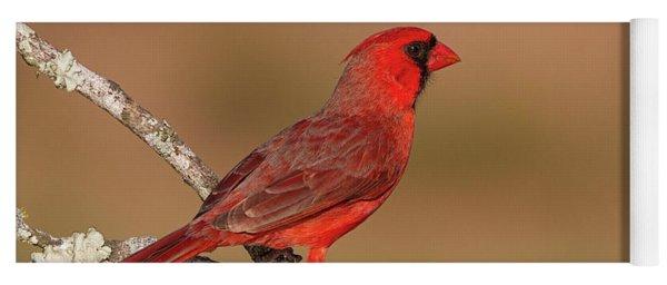 Texas Cardinal Yoga Mat