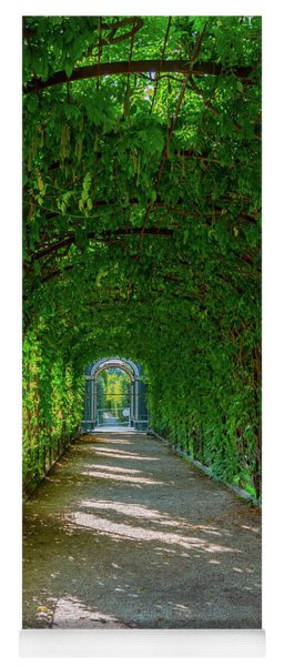 The Alley Of The Ivy Yoga Mat