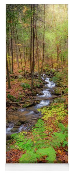 Yoga Mat featuring the photograph The Autumn Forest by Bill Wakeley