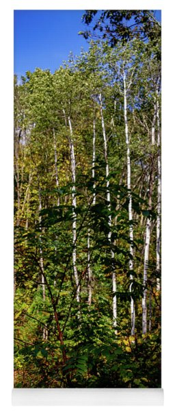 The Birches Yoga Mat