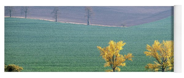 Yoga Mat featuring the photograph The Chestnuts Way, Moravia 15 by Dubi Roman