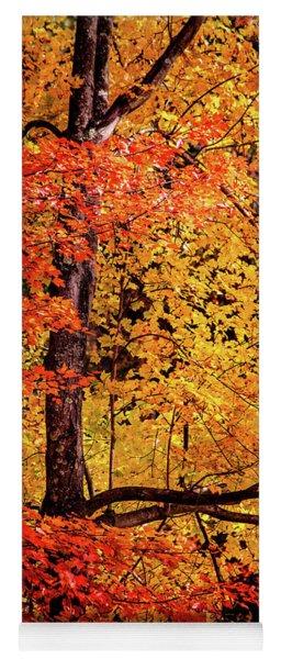 The Colors Of Fall Yoga Mat