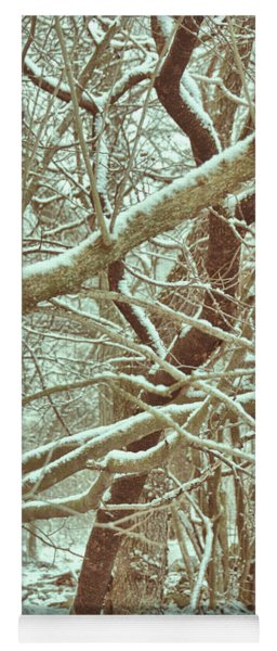 Yoga Mat featuring the photograph The Heart Of Winter by Jamart Photography