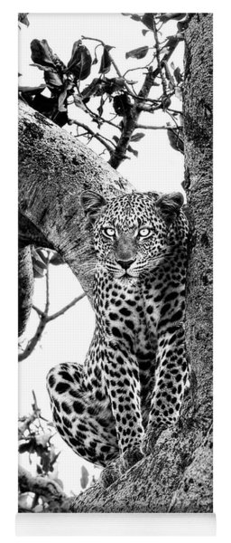 Yoga Mat featuring the photograph The Leopard Sits In Wait In Black And White by Kay Brewer
