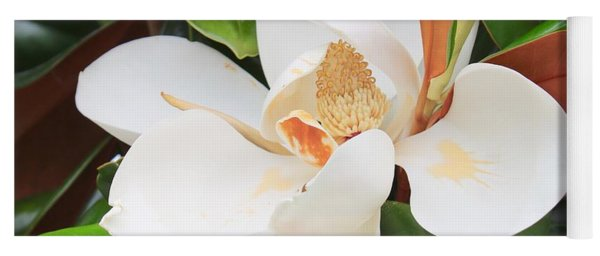 The Loveliest Magnolia Yoga Mat