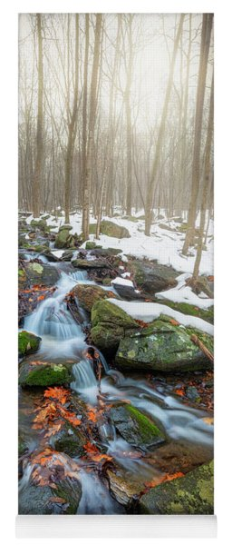 Yoga Mat featuring the photograph The November Forest by Bill Wakeley