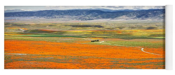 The Road Through The Poppies 2 Yoga Mat