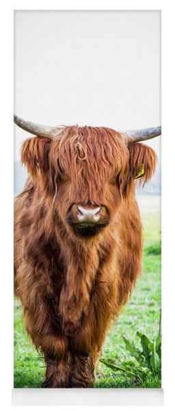 Yoga Mat featuring the photograph The Scottish Highlander by Anjo Ten Kate
