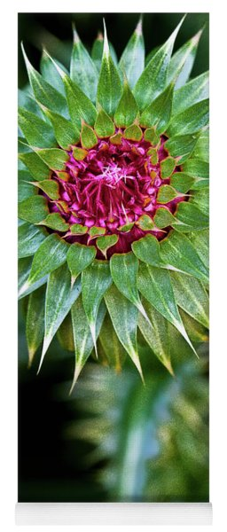 Thistle Bloom Yoga Mat