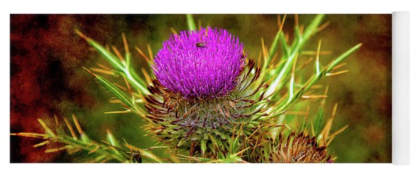 Yoga Mat featuring the photograph Thistle Life by Milena Ilieva