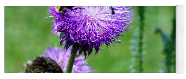 Thistle Visitors Yoga Mat