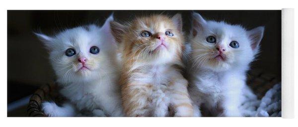 Three Little Kitties Yoga Mat