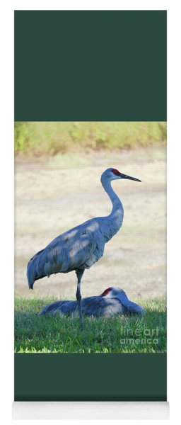 Time To Rest Sandhill Crane Couple Yoga Mat