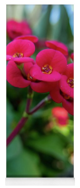 Tiny Red Flowers Yoga Mat