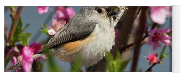 Titmouse And Peach Blossoms Yoga Mat