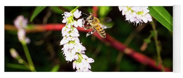 To Bee Or Not To Bee Yoga Mat