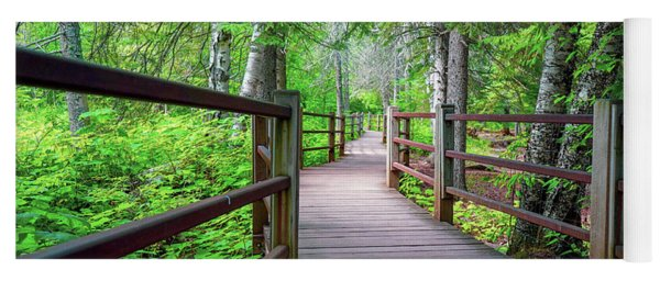 Trail At Gooseberry Falls Yoga Mat