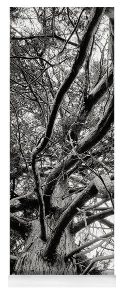 Tree Abstract Yoga Mat