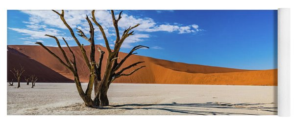 Tree And Shadow In Deadvlei, Namibia Yoga Mat