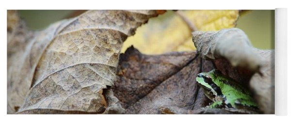Tree Frog Seeking Shelter Yoga Mat