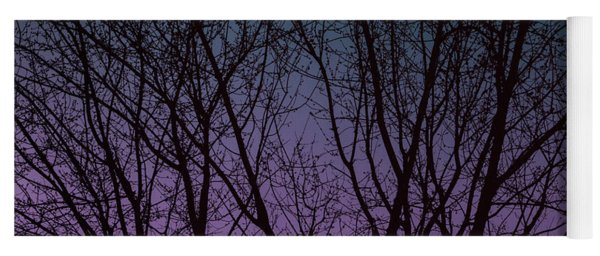 Tree Silhouette Against Blue And Purple Yoga Mat