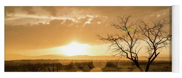Tree Sunset Yoga Mat