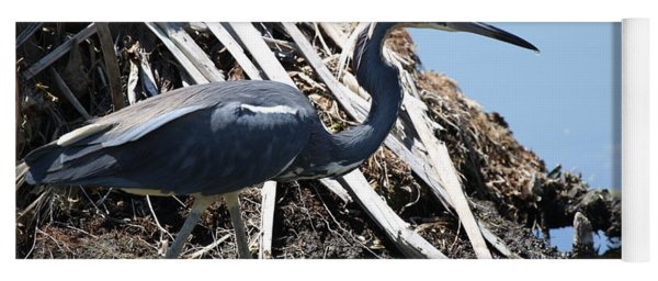 Tri-colored Heron 40312 Yoga Mat